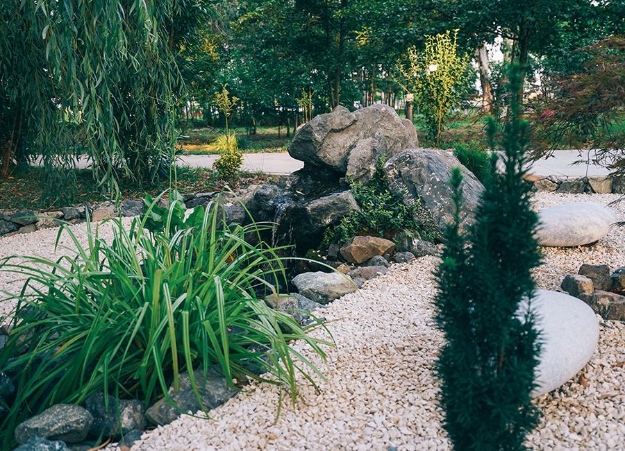 კოის ბაღი