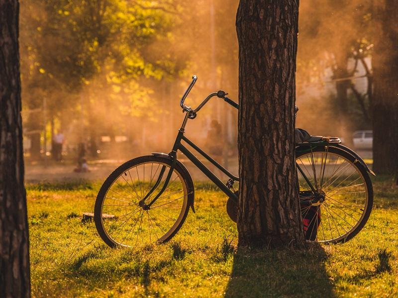 21 მაისი - დაიწყე დღე ველოსიპედით