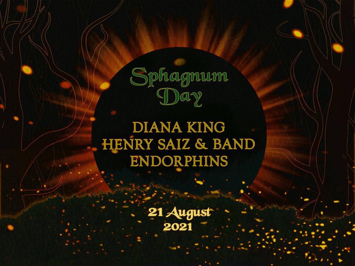 Sphagnum Day: Diana King, Henry Saiz & Band   სოციალური სივრცე